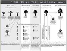 Jacob 5 Olive Tree Allegory Explained #LDS #ldsseminary