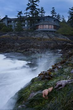 We'll be staying at the Wickaninnish Inn in Tofino during our Vancouver Island road trip. @Wickaninnish Inn