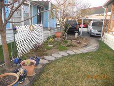 Help with my little garden?