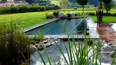 Biopool en tuinzwembad van Hydrobalance in Wenen - uw vijverspecialist Pool Water, Water Garden, Living Pool, Farm Pond, Pool Images, Pool Fountain, Natural Pond, Natural Swimming Pools, Kiddie Pool
