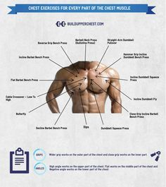 Looking to fix an unbalanced chest? This infographic will teach you how every chest exercise affects the chest muscle fibers. You can build a complete chest workout according to your chest muscle needs.Hope it will sort things out! Fitness Motivation, Fitness Gym, Muscle Fitness, Fitness Tips, Health Fitness, Fitness Goals, Easy Fitness, Best Chest Workout, Chest Workouts