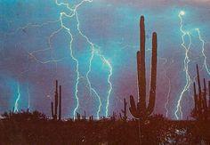 lightning storm in the desert - Mother Nature goes wild! Kitsch, Desert Aesthetic, Aesthetic Dark, Retro, Desert Dream, Desert Life, Night Vale, Desert Plants, Le Far West