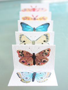 moths and butterflies by Geninne