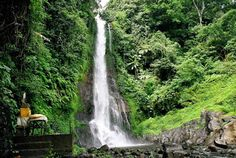 GIT-GIT WATERFALL Git-git which is famous for its scenic waterfalls, during a trip to the village of Git-git you can enjoy the view of a very green forests in the hills with the cold weather and you will see the wild monkey all the way to the village. Lovina Bali, Bali Waterfalls, Water Sports Activities, Green Nature, Bali Travel, Ubud, Along The Way, Day Tours, Natural Wonders