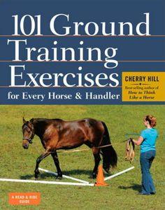 101 øvelser til grunduddannelse af hest og rytter / bog