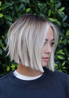 Gorgeous Soft Blunt Bob Haircuts for Women in 2019 for short hair bo. - Gorgeous Soft Blunt Bob Haircuts for Women in 2019 for short hair bob Gorgeous Soft Blu - Bob Haircut For Girls, Bob Haircuts For Women, Girl Haircuts, Haircut Bob, Short Hair Cuts For Women Bob, Styling Short Hair Bob, Bob Haircut For Fine Hair, Diy Haircut, Blunt Bob Haircuts