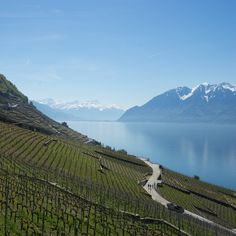 Un superbe week-end au lac Léman en Suisse ! Au programme :  Lausanne, les vignes de Lavaux, Gruyères, Montreux, le musée Chaplin's World, Evian-les-bains et Yvoire !