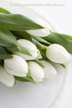 White tulips from the supermarket are an elegant to a white Easter. www.HolidaywithMatthewMead.com