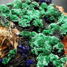 """Gefällt 26 Mal, 0 Kommentare - Natures Artworks 💎 (@macro_crystals) auf Instagram: """"Malachite w/ Azurite on Baryte matrix, Morocco (34x30x20mm)  fov: 15mm . . . #malachite #azurite…"""" Matrix, Broccoli, Minerals, Africa, Herbs, Vegetables, Instagram, Food, Malachite"""