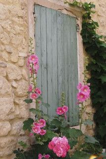 Provence Village - love how hollyhocks self-seed & pop up so majestically around France - even along the mid-west coast.