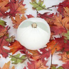 Laura Ashley Blog: DIY Pumpkins