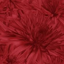red wallpaper uk - Google Search