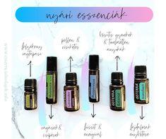 Doterra Peppermint, Melaleuca, Lavender, Essential Oils, Oil, Essential Oil Uses, Lavandula Angustifolia