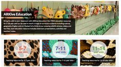 Free Technology for Teachers: Free Lesson Plans About Wildlife
