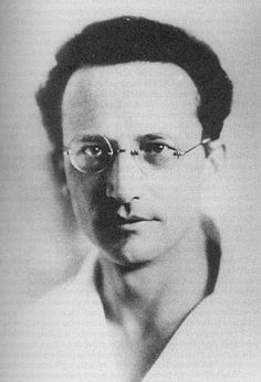 """The task is ... not so much to see what no one has yet seen; but to think what nobody has yet thought, about that which everybody sees. "" ~  Erwin Schrödinger, 1887-1961"