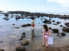 Whenever I give my kids the option of going to the Abalone Cove tidepools, they chose it over any other day trip. Short drive, easy hike, beach, picnic, and marine biology. The perfect day.