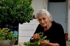 Grandma Olga knows the best wild edible herbs of Crete