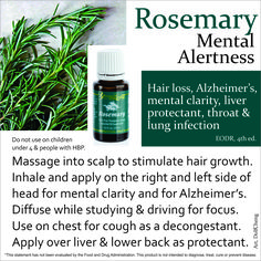 Rosemary has a fresh, herbaceous, sweet, slightly medicinal aroma. An energizing oil, it may be beneficial for helping to restore mental alertness when experiencing fatigue.