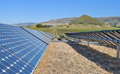 Wine and Solar Panels: Another Perfect Pairing
