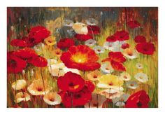 Poppies  Meadow Poppies I Giclee Print by Lucas Santini at Art.com