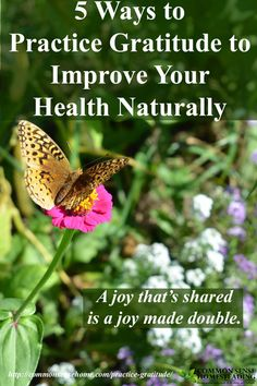 5 Simple Ways Practice Gratitude to Improve Your Health - Being thankful may help promote healing, improve your frame of mind and boost your immune system.