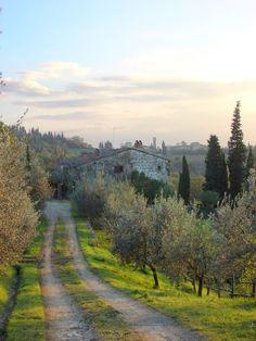 Chianti, Toscana,