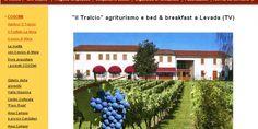 Fantastiche Dolomiti: Agriturismo il Tralcio