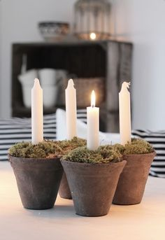 Advent Wreath with mini pots, candles, and moss