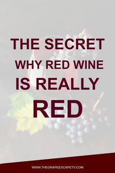 Want to know the secret why red wine is actually red. The answer might surprise you. Finally, know why red wines are red, white wines are white and rose wines are rose!