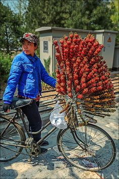 "Meanwhile ~ On A Chinese Street in Beijing, China: ""Would anyone care for a kebab?"" (Photo By:Anna Gibiskys on 500px.)"