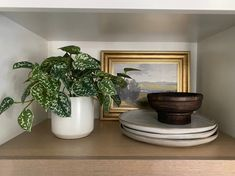 Faux plants are the perfect way to add a maintenance-free finishing touch to brighten up any space. Get the perfect shelf styling with a few artificial plants to polish off the look. Shop this look by @raising3foodies at Afloral.com. Decorating Small Spaces, Decorating Your Home, Keep Life Simple, Artificial Succulents, Silk Plants, Real Plants, Low Lights, Silk Flowers, House Plants