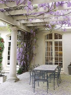 To train wisteria to entwine a pergola, make sure it's planted along a sturdy structure, and start by allowing two or three young shoots to wrap loosely around each other.