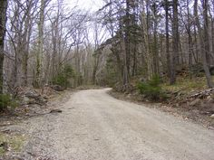 Monadnock State Park, Old Toll Road, springtime