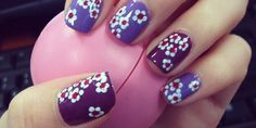 PlumDelicate flowers for spring on a vibrant purple