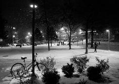 Nighttime Snowfall @ Binghamton University