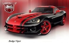 Diffusers With Snake Head logo. Dodge Viper 5 Rear Fins