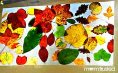 Great Project for All Ages - Autumn Leaf Collage Sun Catcher