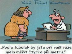Funny Memes, Jokes, Chuck Norris, Pavlova, Humor, Haha, Funny Pictures, Family Guy, Comics