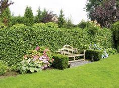 Die Heckenmodule schaffen einen natürlichen Sichtschutz für ein lauschiges Plätzchen oder für das Aufstellen der Gartendusche.