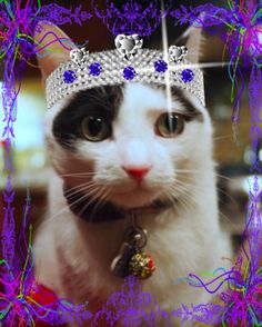 Lisbeth hosts the Sunday Selfies Blog Hop in her lovely tiara.