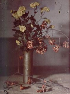 Karl Struss, Still Life with Pewter Vase, New York, 1910