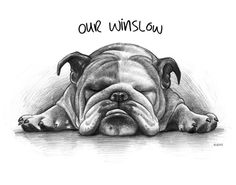 Pencil Sketch your Pet as Art From a Photo -  Perfect gift for Dad and Grads - Examples with custom text http://www.giveamasterpiece.com/eshop/10expand-pencilsketch.asp