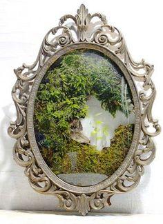 / frame garden / the slug and the squirrel / Indoor Garden, Indoor Plants, Home And Garden, Moss Decor, Parisian Decor, Garden Mirrors, Tabletop Fountain, Decoration Plante, Moss Garden