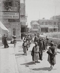 Palestine before the terrorist came