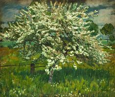 Antonin Hudecek - Blossoming Apple Tree, 1941, oil on canvas