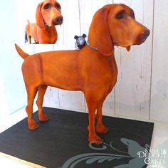 Vizsla Dog Cake - Cake by Sweet Delight Cakes 10 Birthday Cake, 10th Birthday, 3d Dog, Hungarian Vizsla, Curious Kids, Sculpted Cakes, Dog Cakes, Cute Funny Dogs, Funny Dog Pictures
