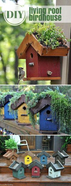 This living roof birdhouse is so cute. I want one in our garden. I always loved to create and construct things so this DIY kit is just perfect for me. #ad #birdhouse #planter #kit #diy #garden #decoration #outdoor #patio #backyard #homedecor #gardenplanters #roofgardens