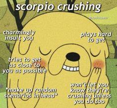 Scorpio Zodiac Facts, Scorpio Traits, Zodiac Sign Traits, Zodiac Signs Horoscope, Zodiac Memes, Zodiac Star Signs, My Zodiac Sign, Astrology Zodiac, Zodiac Quotes