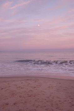 a beach enveloped in pink