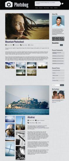 Photobug Theme Review - Organized Themes